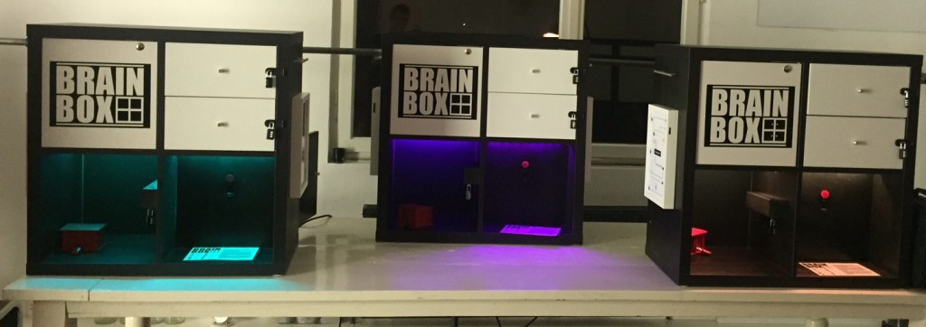 BrainBox Escape Game
